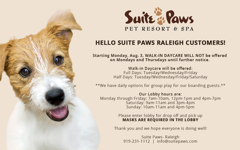 Suite Paws Raleigh